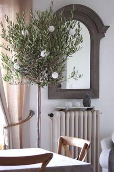 Haikaranpesä kodiksi.: Pikkujoulupuu.  Olive tree