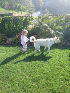 Maggie and Avery on the prowl at Pop's and Grandma's house Saturday morning.