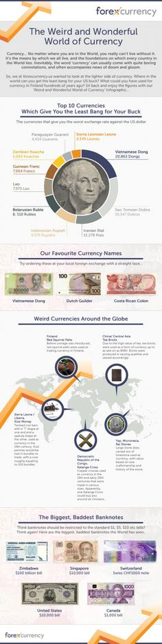 Trading & Currency infographic & data The Weird And Wonderful World Of Currency. Infographic Description The Weird And Wonderful World Of Currency Forex Trading Software, Forex Trading Tips, Forex Trading Signals, Forex Trading Strategies, Online Trading, Day Trading, Foreign Currency Trading, Weird And Wonderful, Wonderful Things