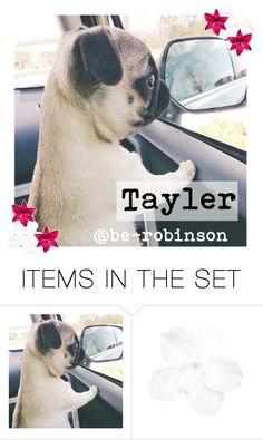 """My new icon!"" by be-robinson ❤ liked on Polyvore featuring art"