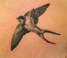 This artistic black and white swallow tattoo is posed as though viewed from below