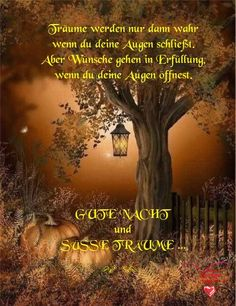 Dreams come true only when you close your eyes. Good Night Messages, Good Night Wishes, Evening Greetings, German Quotes, Night Routine, Real Plants, Fun Hobbies, Close Your Eyes, Dream Come True