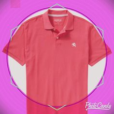 Express polo Express pink polo worn only once Express Tops Tees - Short Sleeve