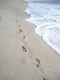 Walking on a quiet beach, early morning or at sundown. This is the Outer Banks, Duck, NC