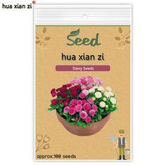 HUA XIAN ZI Chrysant Perennial Bonsai Sier Bloemzaden Daisy Potplant voor Home Tuin 100 zaden/tas