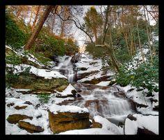 Snow Falls North Georgia mountains
