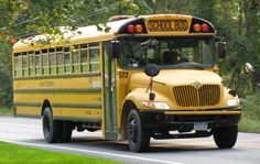 10 IMPORTANT LIFE LESSONS I LEARNT FROM THROWING MY FAECES AT A SCHOOL BUS #humor #funny #lol #comedy #chiste #fun #chistes #meme