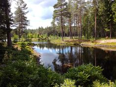 Kiikala, Suomi