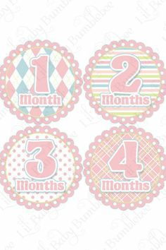 Monthly Onesie Stickers Lola Posh and by LittleBabyBumblebee Baby Month Stickers, First Year Photos, Monthly Photos, Fantastic Baby, Gifts For New Moms, Baby Milestones, Baby Month By Month, Sticker Paper, Little Babies