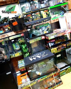 Looking to create a great environment for your reptile? 🐍🦎 We have a great selection in store! Check our site for more! #MagazooReptiles Reptiles, Reptile Accessories, Environment, Create, Store, Check, Storage, Shop, Environmental Psychology