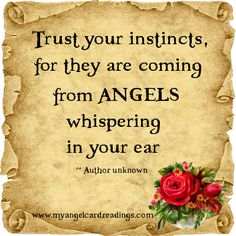 Inspirational Quotes - Angel Quotes - Uplifting Quotes - Angel Sayings - Angel… Angel Prayers, Trust Your Instincts, I Believe In Angels, Angels Among Us, Guardian Angels, Guardian Angel Quotes, Trust Yourself, Wise Words, Decir No