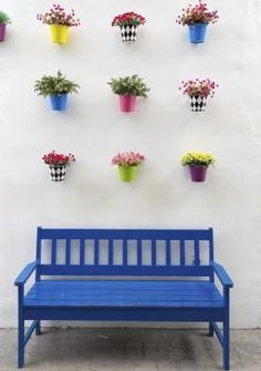 Como escolher flores para vasos suspensos | #decoracao #casa