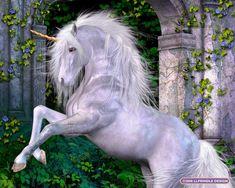 licorne blanche sur ses pattes arrière