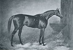 Doncaster (1870–January 1892) was an English Thoroughbred racehorse and sire. He was the winner of the 1873 Epsom Derby and the sire of the great stallion Bend Or.  This horse sold for 14,000 pounds in 1876!!