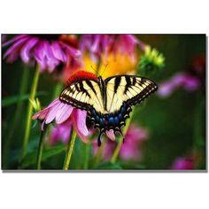 Trademark Fine Art Garden Jewelry Canvas Wall Art by Lois Bryan, Size: 22 x 32, Multicolor