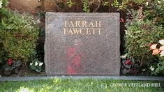 Grave of Farrah Fawcett. A George Vreeland Hill pin. Cemetery Monuments, Cemetery Statues, Cemetery Headstones, Old Cemeteries, Cemetery Art, Graveyards, Famous Tombstones, Famous Names, Farrah Fawcett