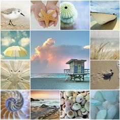Coastal collage