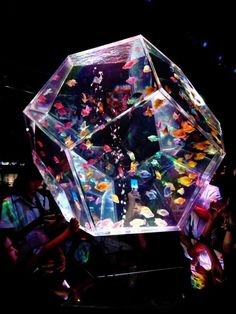 *geometric fish tank. When I own a home I want a giant fish tank installed somewhere