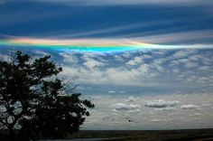 18.Circumhorizontal arcs, misleadingly known as fire rainbows: an optical phenomenon featuring an ice halo formed by plate-shaped ice crystals in high level cirrus clouds.