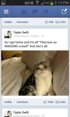 Taylor Swift and Meredith