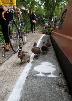 Someone painted Duck Lanes near the Canal walkways in London.