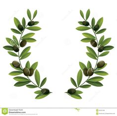 Find Black Olive Branches Wreath stock images in HD and millions of other royalty-free stock photos, illustrations and vectors in the Shutterstock collection. Branch Drawing, Olive Wreath, Leaf Border, Wreath Drawing, Printable Pictures, Laurel Wreath, Borders And Frames, Green Watercolor, Botanical Illustration
