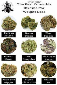 Buy Marijuana Online I Buy Weed online I Buy Cannabis online I Edibles Medical Cannabis, Cannabis Oil, Cannabis Plant, Buy Cannabis Seeds, Ganja, Planta Cannabis, Medical Marijuana, Weed, Medicinal Plants