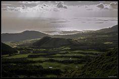 green and silver , Pico, Azores, Portugal by Pedro Silva