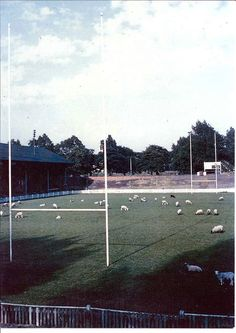 Welford Road in the 1970's.