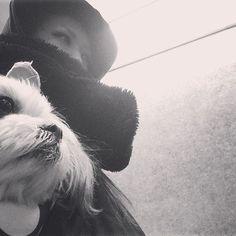 今日もサイクリング🚴🗯 #mosh  #モッシュ #もっしゅ 🎶 🎶 🎶 #犬#いぬ#いぬバカ部#いぬすたぐらむ#犬のいる暮らし#親バカ#親バカ部#マルチーズ#シーズー#mix犬#ミックス犬 #雑種#わんこ#わんわん#愛犬#シュール#dog#doglover#doglife#lovedog#maltese#shihtzu#dogstagram#instadog#dog🐶  #dogdays  #mydog