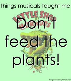 Things Musicals Taught Me - Little Shop of Horrors Broadway Theatre, Musical Theatre, Broadway Shows, Theatre Quotes, Theatre Nerds, The Wedding Singer, Little Shop Of Horrors, Drama Queens, Life Lessons