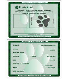 SOS Animal  com amor: Carteira de identidade para o animal  RG grátis