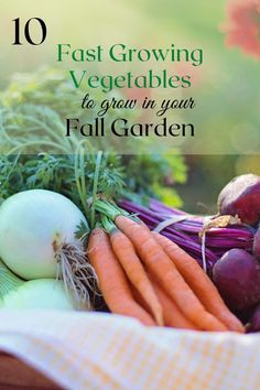 These fast growing vegetables are great for a fall garden! with a quick germination rate and an equally short time to maturity, these are the perfect plants for a late summer planting! Fast Growing Vegetables, Perfect Plants, Autumn Garden, Late Summer, Vegetable Garden, Gardening Tips, Backyard, Fall, Autumn