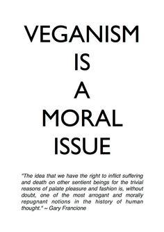 A moral issue Go vegan and nobody gets hurt ✌️ Quotes Vegan, Vegan Memes, Vegan Humor, Vegetarian Quotes, Mein Seelenverwandter, Vegan Fitness, Reasons To Go Vegan, Vegan Facts, Why Vegan