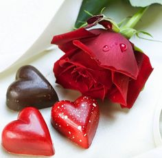 صور حب غرامية صور حب للعشاق صور جميله عن الحب Beautiful Red Roses Love Rose Rose Wallpaper