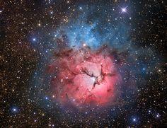 The Trifid Nebula, M20, 5,000 light years away toward the constellation Sagittarius.