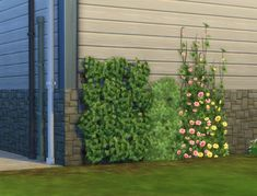 Sims 4 | GT Wall Deco Height Overrides #pbox buy mode garden plant override