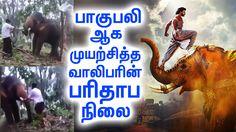 நிஜ வாழ்க்கையில் பாகுபலி ஆக முயற்சித்தவர். என்ன ஆனார் தெரியுமா? வீடியோ உள்ளே. | #TamilCinemaNews | #Kollywoodcentral | #LatestSeithigal