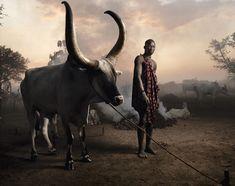 Marco Grob : L'argent, les gens, la politique - L'Œil de la photographie