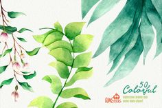 50 Colorful Leaves by AMStock on Creative Market