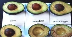 How To Keep Avocados Fresh With This Easy Trick is part of Avocado recipes It's kitchen time If you love avocados as much as me, this is for you If you hate them for turning brown as much as I d - Avocado Storage, Fresco, Guacamole, How To Cut Avocado, How To Store Avocado, How To Cut Mango, Real Food Recipes, Healthy Recipes, Juice Recipes