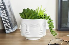7 Unique and Inexpensive Planters for Your Home and Garden - Modern Face Planters, Ceramic Planters, Garden Planters, Ceramic Vase, Dry Plants, Live Plants, Indoor Plants, Colorful Succulents, Decorating Small Spaces
