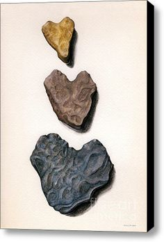 Heart Shaped Rocks Stretched Canvas Print / Canvas Art By Janice Dunbar