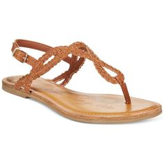American Rag Keira Braided Flat Sandals, ($15) ❤ liked on Polyvore featuring shoes, sandals, cognac, woven flat shoes, american rag cie, woven sandals, flat sandals and flat footwear