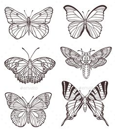 Illustration of Set of vector hand drawn butterflies vector art, clipart and stock vectors. Tattoo Sketches, Tattoo Drawings, Art Drawings, Embroidery Monogram, Embroidery Patterns, Butterfly Outline, Butterfly Hand Tattoo, Butterfly Template, Butterfly Design