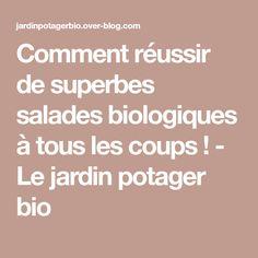 Comment réussir de superbes salades biologiques à tous les coups ! - Le jardin potager bio