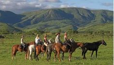 Songimvelo Game Reserve: #EcoWildRoute
