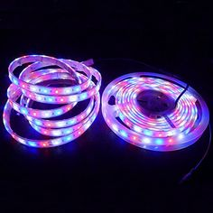 Led Grow Light Strips New Products Led Neon Rope Light Smd Led Car Lights Direct From