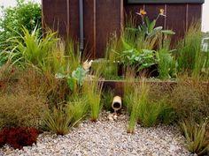 Garden Landscape Design Auckland Garden Design Auckland Landscape