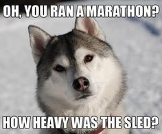 Oh, you ran a marathon? How heavy was the sled? #runninghumor